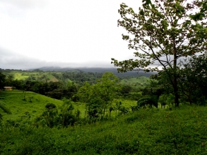 Project with Excellent Potential Near La Fortuna