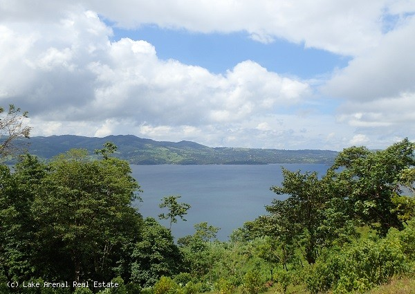 Lake View Parcel with 10 Lots---Priced for Quick Sale and Ready to be Developed!