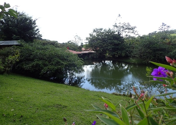 Restaurant, Bar and Tilapia Farm on 1.5 Hectares