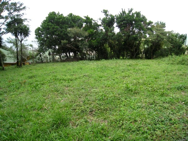 400 m2 Lot, Motivated Seller