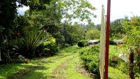 Outstanding Investment Opportunity---2 Lots with a House, Walking Distance from Town