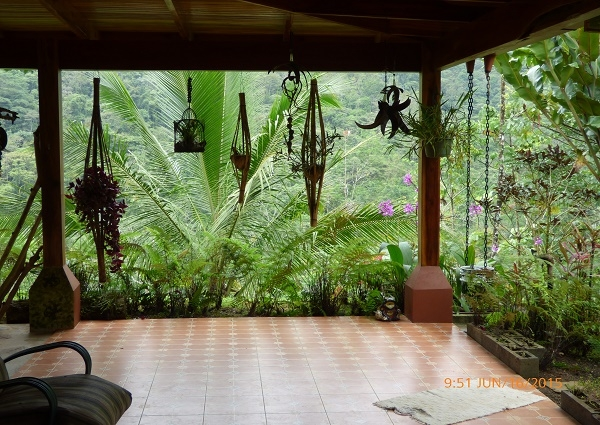 Gorgeous Home on 16 acres in the Rainforest Highlands