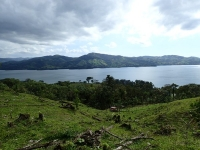 5,010 m2 Lot with View of Lake Arenal, off Paved Road