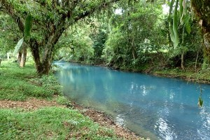Price Reduced for Quick Sale!!! Amazing Property on the Famous Rio Celeste